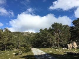 Collado del alto de la Gargantilla, con la cumbre de Cueva Valiente al fondo.