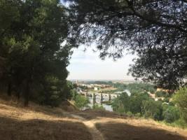 El puente romano de Cabezón de Pisuerga nos recibe en nuestro camino de vuelta a esta localidad