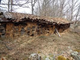 Viviendas de abejas