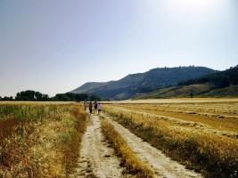 Camino de Vecilla 3